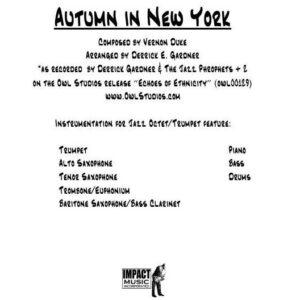 Autumn In New York***